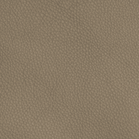 Taupe 65