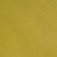 Lime 23